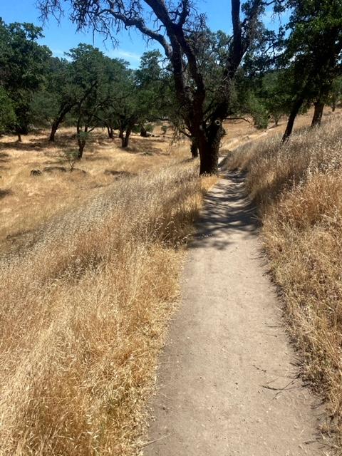 Exploring Rockville Hills Regional Park