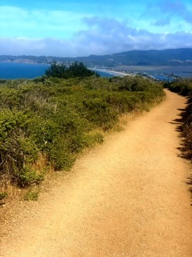 Running the Double Dipsea Trail