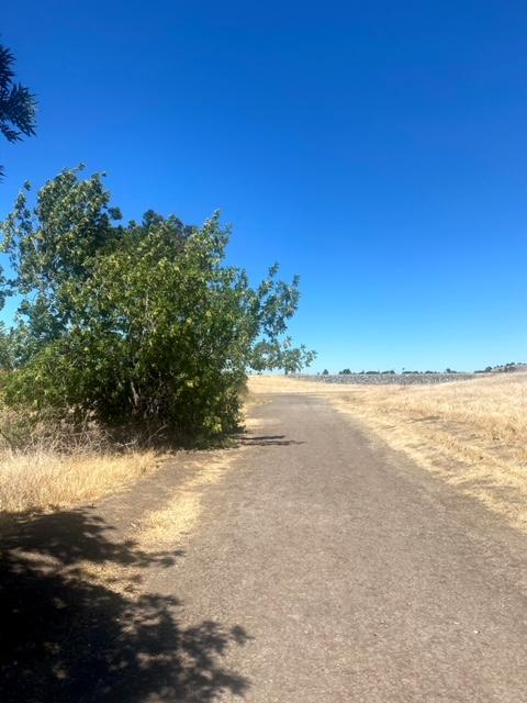 Contra Loma Regional Park (Antioch)