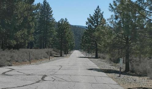 Running Lake Ella Trail