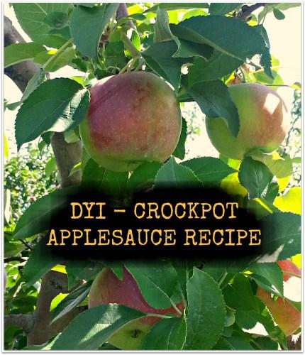 DYI: Crockpot Applesauce
