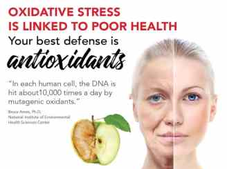 Oxidative stress linked to poor health