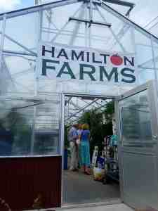 Hamilton Farms greenhouse (outside view)