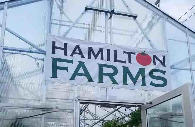 Hamilton Farms Greenhouse
