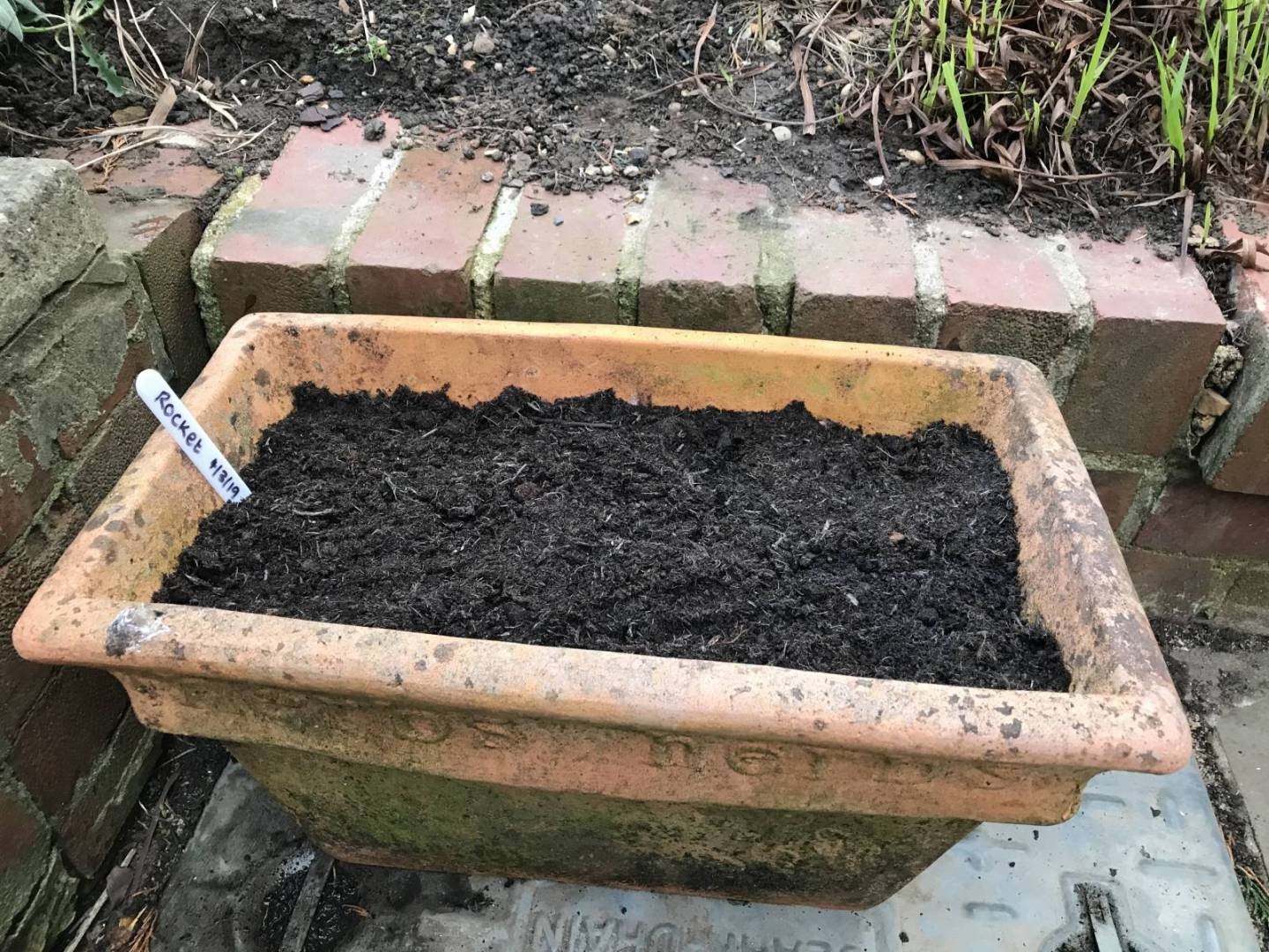 first time vegetable garden project