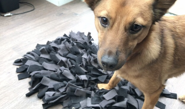 How to make a Dog Snuffle Mat