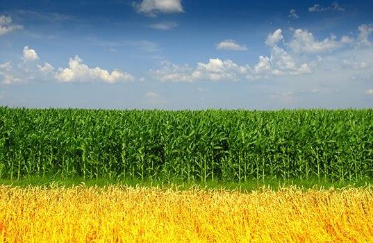 Growth Energy: U.S. Biofuels Help Drive Environmental Progress