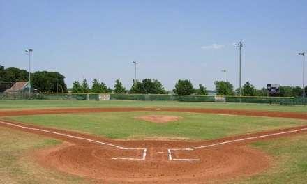 Baseball and Business