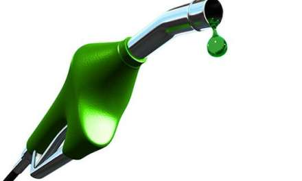 Food Prices Merrier as Biodiesel Production Grows