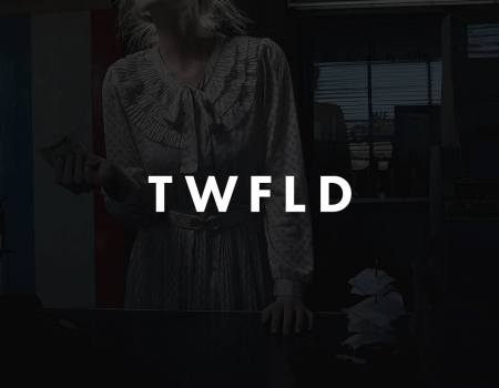 "4 Ways to Make Use of ""TwoFold"", Our Newest Theme WordPress Theme"