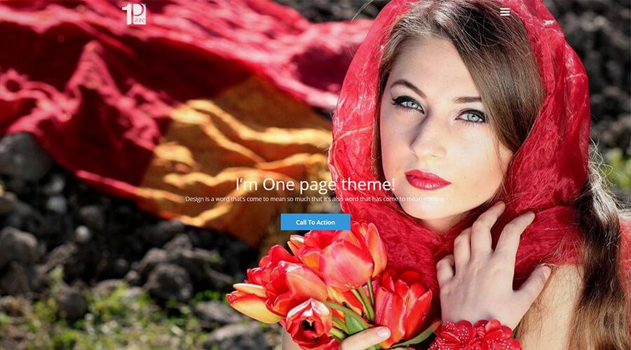 WordPress One Page Themes: One Paze