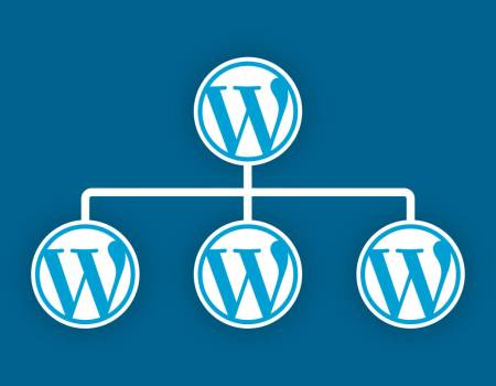 All You Need to Know About WordPress MultiSite WordPress Theme