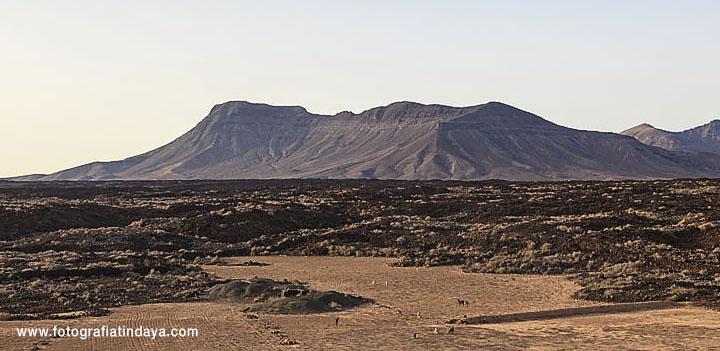 El Paisaje protegido de Malpaís Grande El Paisaje protegido de Malpaís Grande se localiza en los municipios de Antigua y Tuineje en la Llanura Central de Fuerteventura, y forma parte de los conjuntos morfoeruptivos más recientes de la isla, junto con los volcanes de la Caldera de Gairía, Pájara, Jacomar, La Arena que conforma el Monumento Natrural del Malpaís de La Arena , y el Malpaís de Bayuyo e isla de Lobos. Posee una superficie de 3.245,3 hectáreas en este paisaje protegido están las entidades de poblacinales de Teguital y Casas de Teniscoquey y destaca por su singularidad, belleza e intenso color negro en un entorno de tonalidades blancas, ocres y amarillas. Limita en sus límites sur y sureste con el monumento natural de Los Cuchillos de Vigán, y al norte y noroeste con el Monumento Natural de la Caldera de Gairía y el Malpaís Chico La importancia del paisaje del Malpaís Grande radica en que son volcanes en los que se reconocen formas volcánicas directas como los conos, embudos de explosión,cráteres, hornitos, tubos volcánicos, en buen estado de conservación. Las emisiones de Caldera de Liria, Caldera de La Laguna, Calderita y Caldera de Arrabales dieron lugar a un extenso campo de lavas conocido como Malpaís Grande. Una parte de estas coladas de lava se canalizaron por el Barranco de Pozo Negro hasta llegar a la costa. El campo de lavas del Malpaís Grande y su entorno configuran un paisaje representativo de las llanuras de Fuerteventura, donde las coladas emitidas por la Caldera de Liria y Caldera de La Laguna ejemplifican un típico fenómeno de construcción de relieve. Ambos volcanes llegaron prácticamente intactos hasta nuestros días, pero corren el peligro de desaparecer por la extracción de picón que se realiza en ellos. Hay autores que basándose en datos estatigráficos, geológicos y geomorfológicos establecen una edad relativa para la los conos del Malpaís Grande inferior a los 26.000 años B.P. El conjunto eruptivo del Malpaís Grande muestra tres rumbos d