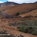 Los nateros en Fuerteventura