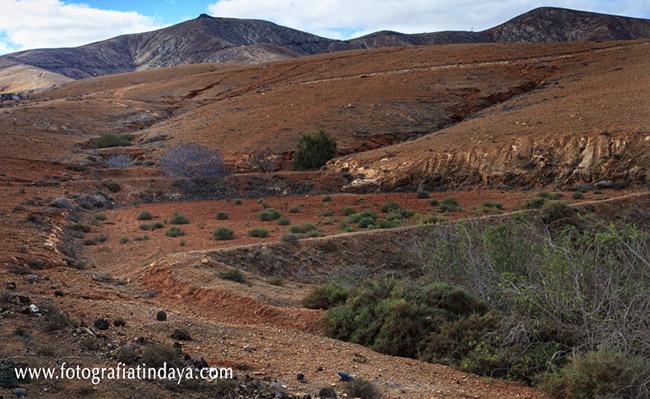 Los nateros – Sistemas agrícolas en Fuerteventura