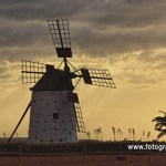 Molinos y Molinas de Fuerteventura