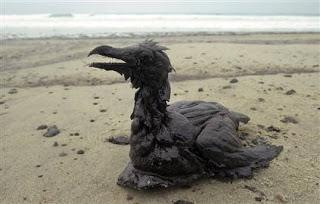 oil-spill_0
