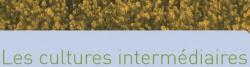 cultures_intermediaires