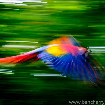 Panning only