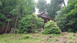 金峯神社 東大阪市の藤井カイロプラクティック