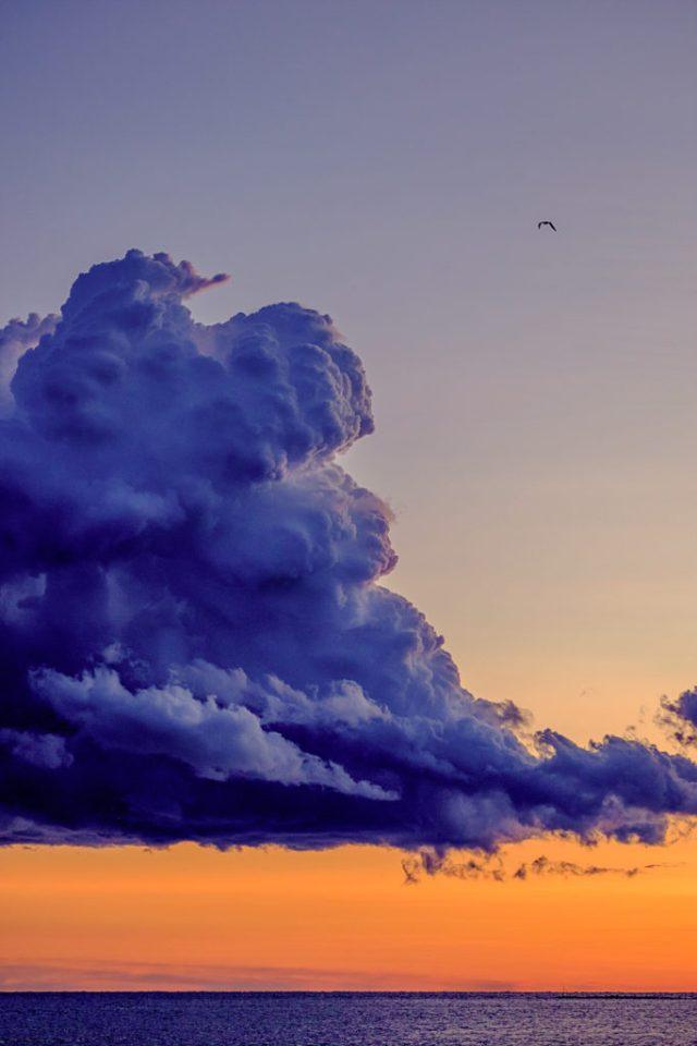 One Cloud..One Bird   Fujifilm   X-T1   50-140mm