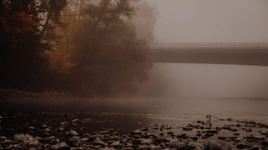 Brücke im Nebel | Fujifilm | X-T1 | 50-140mm