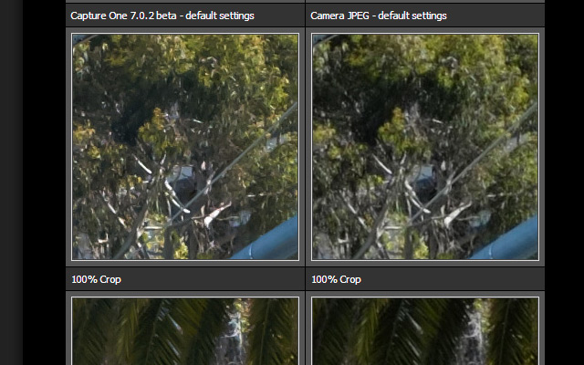 Revelado con Capture One VS JPEG de la cámara by DPreview