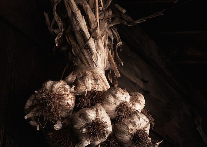 "Tercer premio: ""Allium Sativum"" por Santi Barandica. X-T1 + XF 18-55mm F2.8-4."