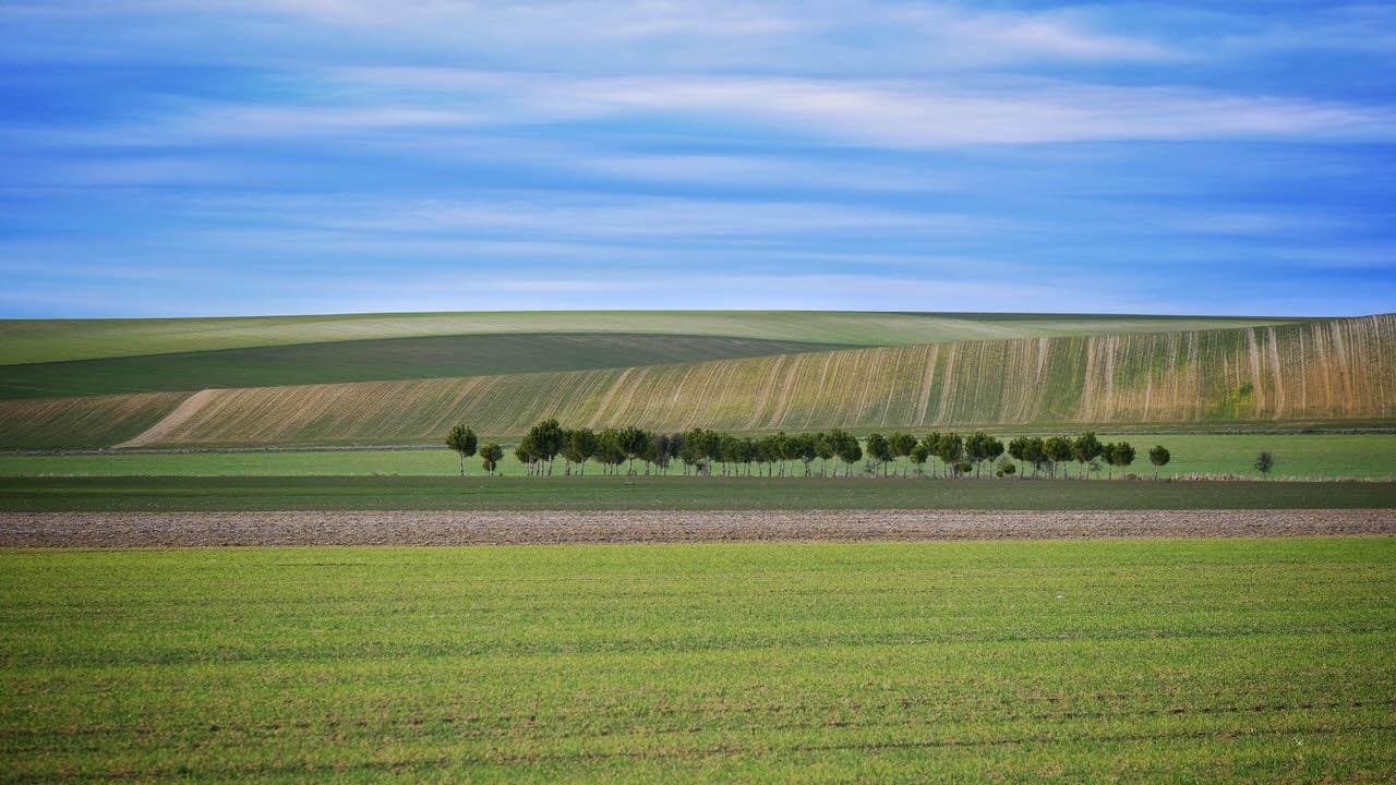 """Tímido paisaje"" por Montaña Royo. X-T2 + Fujinon XF 55-200mm f/3.5-4.8 LM OIS."