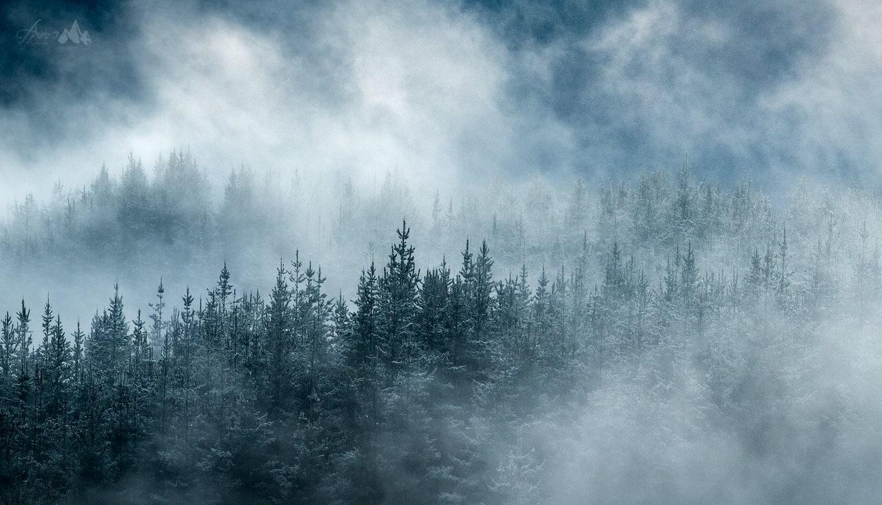 """Simetria Invernal"" por Aitor Acedo. Fujifilm X-T2 + Fujinon XF 50-140mm F2.8 R LM OIS WR."