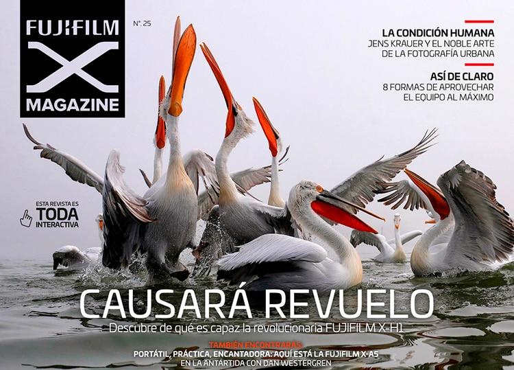 Fujifilm X Magazine 25.
