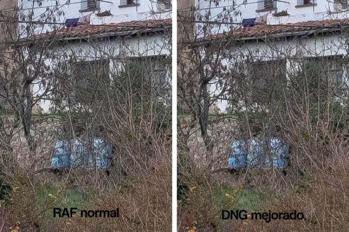 """RAF vs DNg con """"detalles de la mejora"""". Fuji X-T3 + XF 50mm F1.2 R WR. Enfoque 60, detalles 80."""