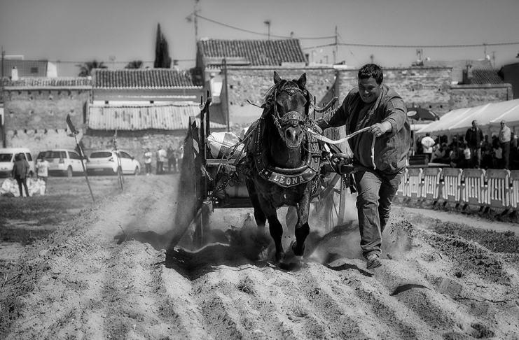 """""""Horsepower"""" por Paco Verdeguer. Fujifilm X-H1 + XF16-55mmF2.8 R LM WR."""