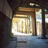 洞窟に湧く霊水、銭洗弁財天宇賀福神社を歩く