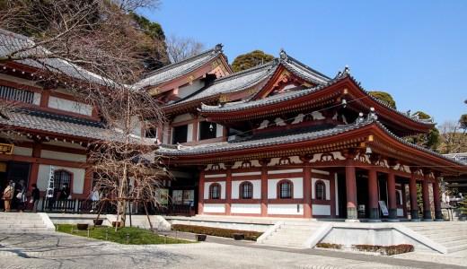 四季の花咲く観音霊場/鎌倉 長谷寺