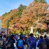 秋の日帰り高尾山ハイキング①~6号路びわ滝コース~