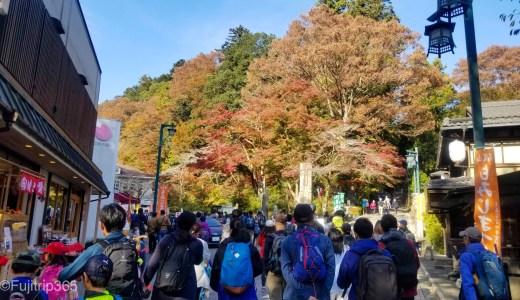 【秋の日帰り高尾山】その1~6号路びわ滝コース~