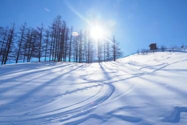 スキー初心者向けのエッジの研ぎ方や頻度について解説します