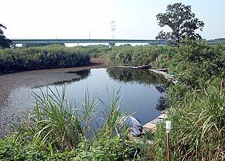 荒川 - 糠田橋から御成橋