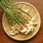 新生姜の旬と時期によって作り分ける甘酢漬けとはちみつ漬けのレシピ