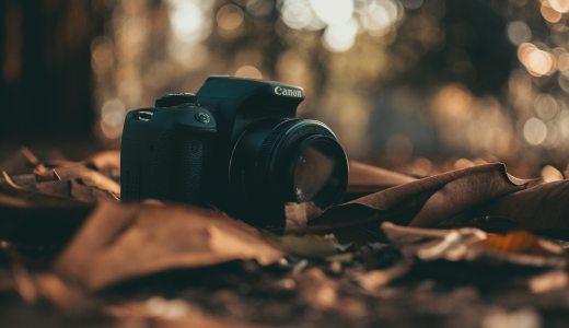 単焦点レンズのメリット・デメリットは?私が単焦点レンズしか使わない理由とは?