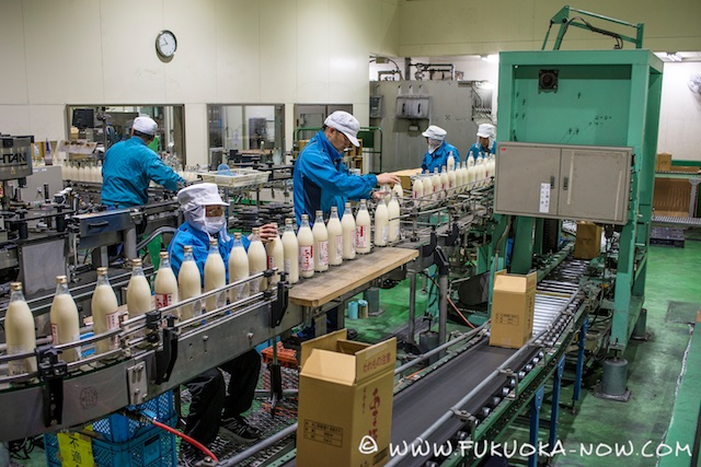 Inside an Amazake Bottling Plant