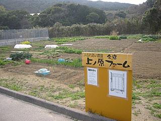 今話題の貸し農園(レンタル畑)福岡ではどこにある?料金は?