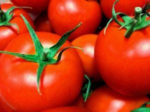 トマト 収量増