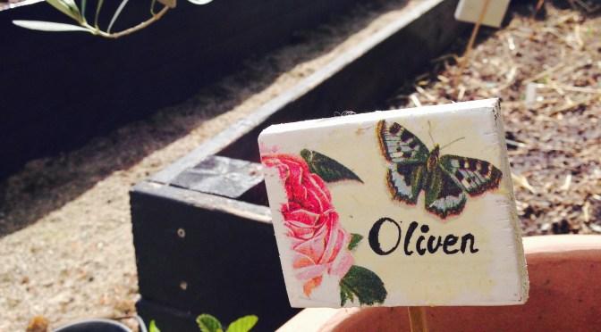 DIY – vintage planteskilte