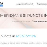 Meridiane acupunctura, cai sigure de vindecare
