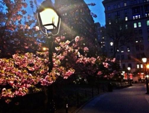 Dusk in New York City