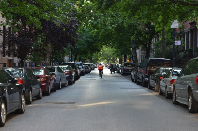 Tree Lined Street in NYC
