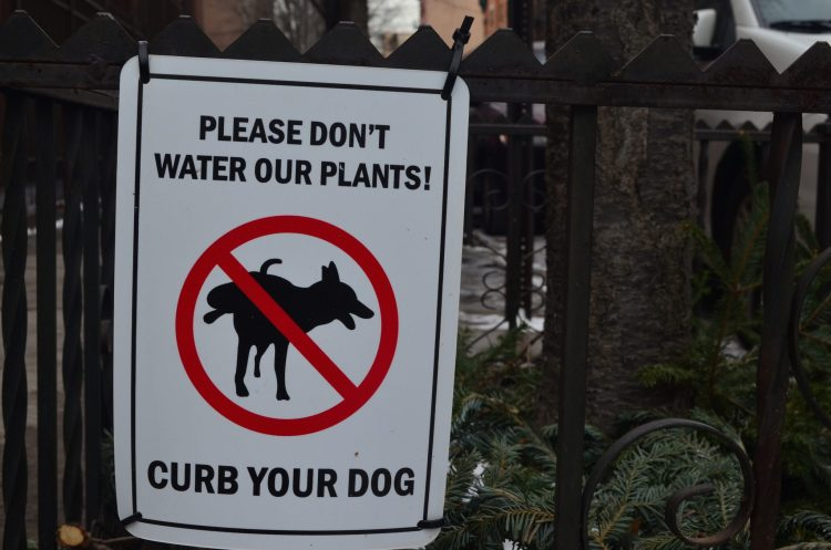 Curb your Dog Sign in Central Harlem