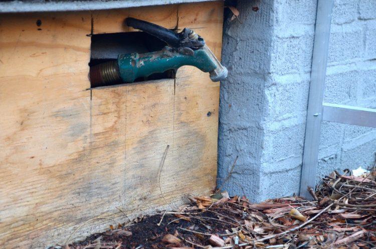 Watering Hose New York City Garden